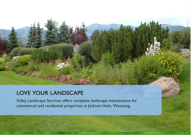 Valley landscape service landscaping lawn and tree care for Garden landscaping services